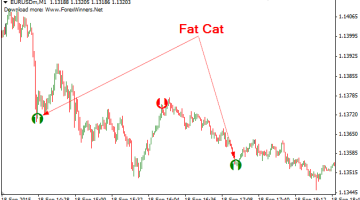 Download Free Fat Cat Forex Scalper Indicator - Best Free Forex Indicator