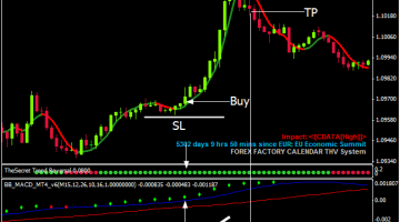 Download Free The Scalping Secret - Best Free Forex Trading System